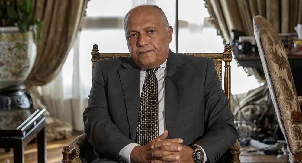 وزير الخارجية المصري - أرشيفية