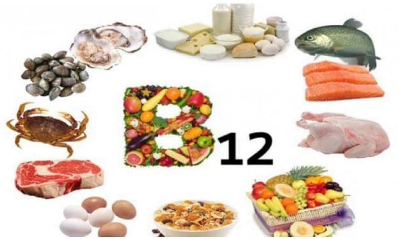 أهم مصادر فيتامين B12