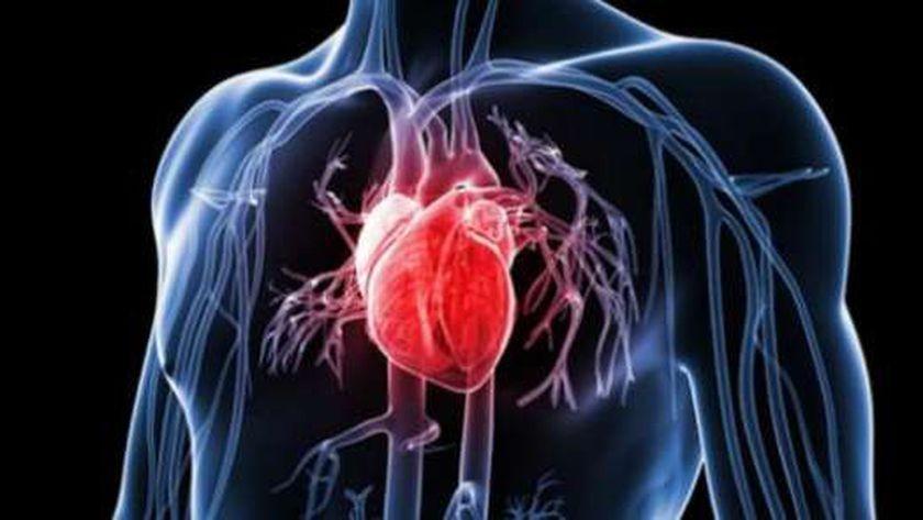 القلب- صورة تعبيرية